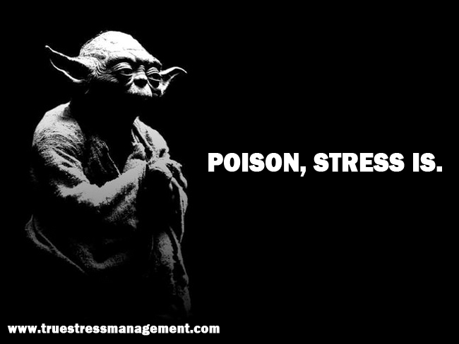Yoda Stress Quotes 4