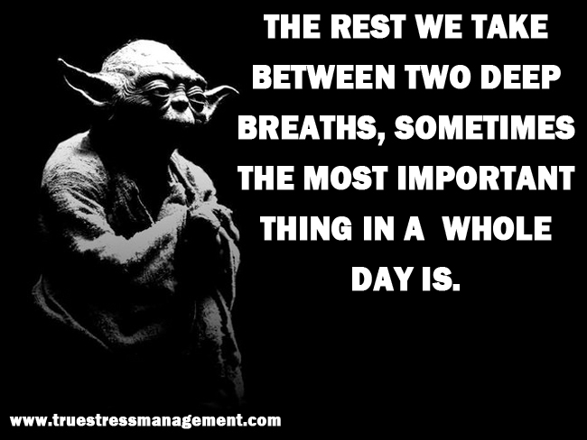 Yoda Stress Quotes 7