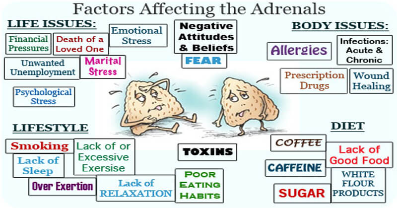 adrenal fatigue factors