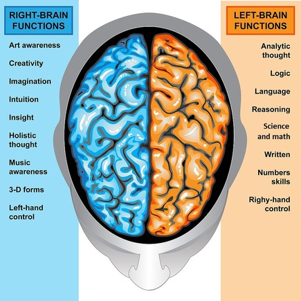 left and right side of brain