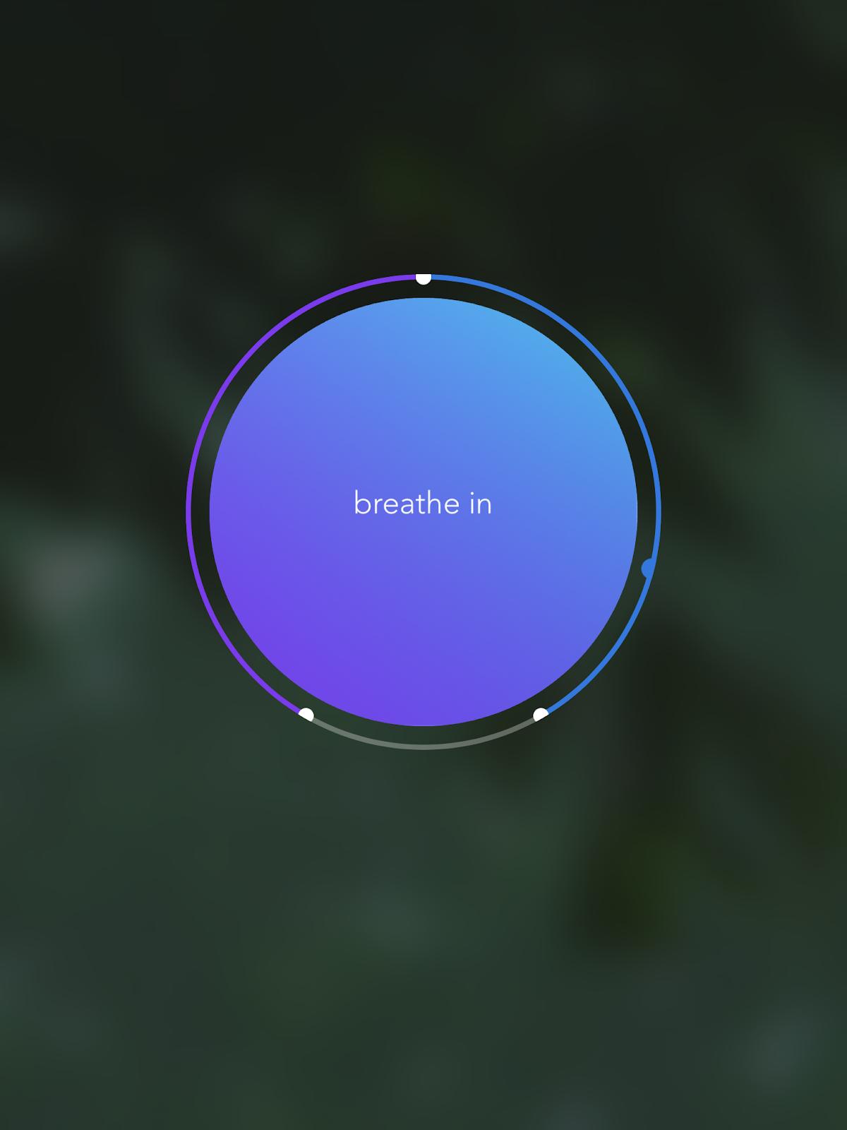 "The ""Breathe Bubble"" Calm App"