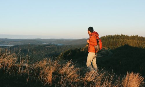 mindful walking