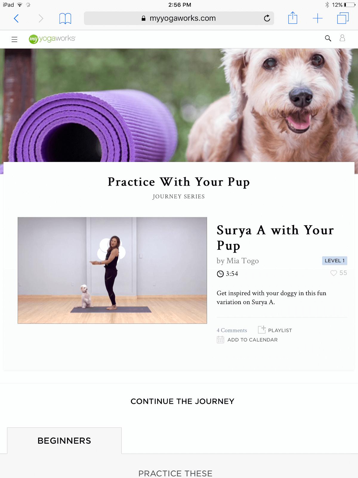 MyYogaWorks Dog Yoga Class